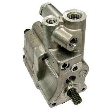 Rexroth AZPFF series hydraulic double gear pump AZPFFF-11-019/019/008RRR202020KB
