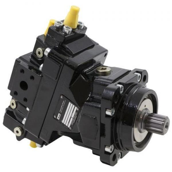 Rexroth A2F6.1, A2FO 6.1 Fixde Displacement Pump/Motor #1 image