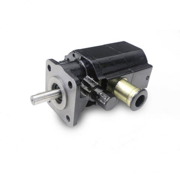 Top Quality Factory Price PLP Series Gear Pumps Casappa Hydraulic Pump #1 image