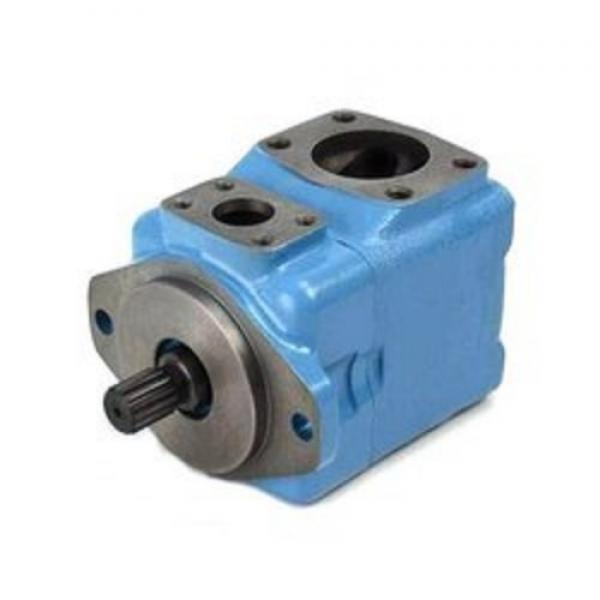 Equivalent Yuken Vane Pumps PV2r1, PV2r2, PV2r3, PV2r4, PV2r31, PV2r21, PV2r32 Series Pump #1 image